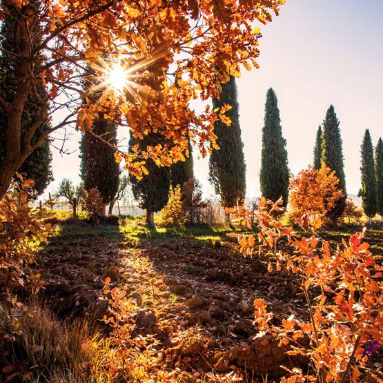 Vacanze autunno Umbria
