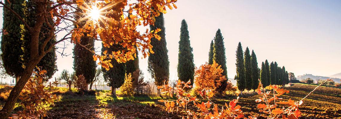 panorama autunno Umbria