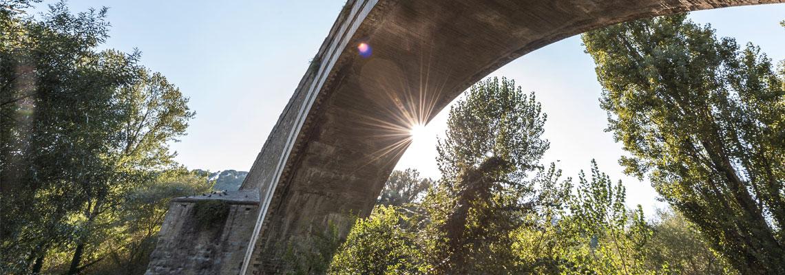 Lungotevere ponte valleceppi