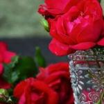 Location e consigli da non perdere per il vostro San Valentino | Perugia