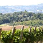 Ramazzano (Le Pulci), tra castelli e dolci colline | Perugia