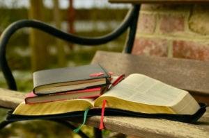 Libro sulla panchina