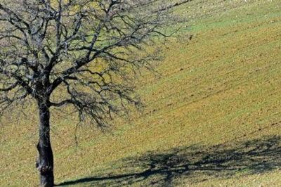 colline umbre perugia