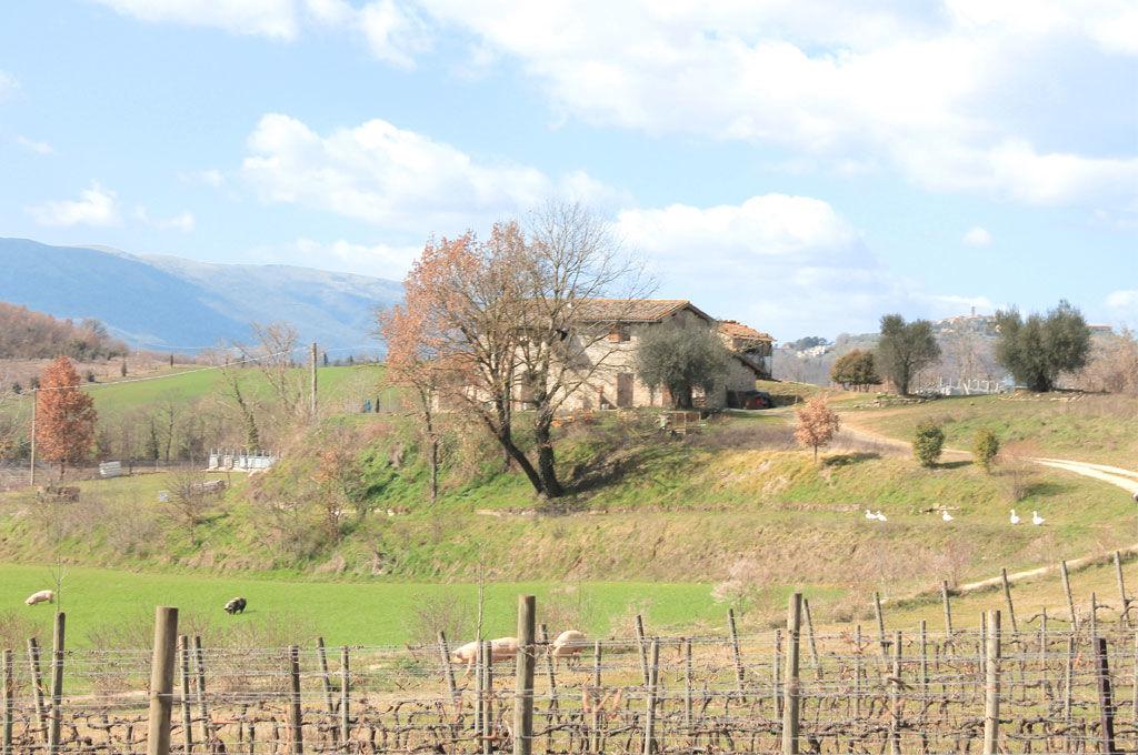 Casa di campagna Montelabate perugia