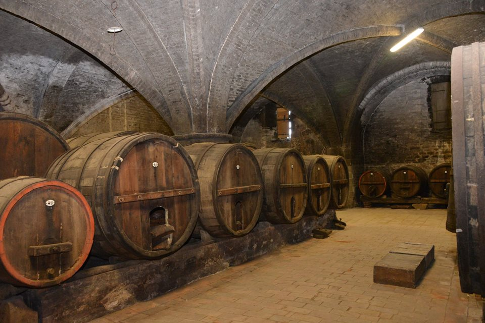 cantina Montelabate abbazia perugia