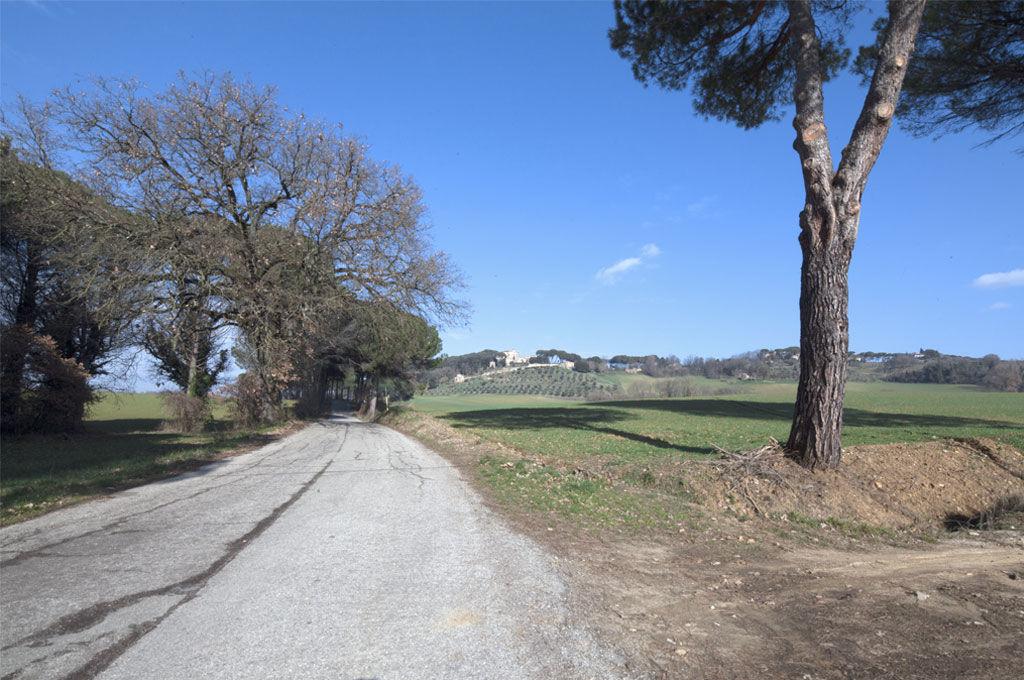 Strada per Solfagnano