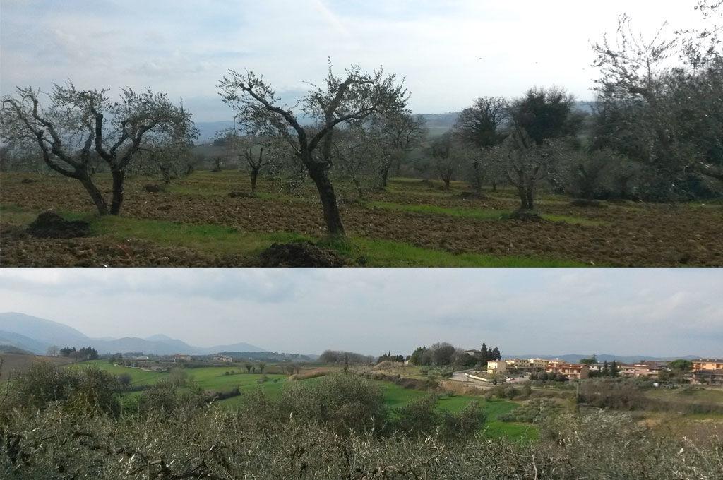 Campagne intorno a Ripa Perugia