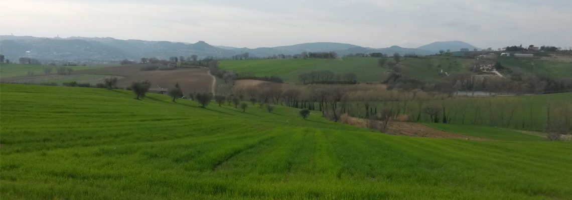 lidarno-colline-umbre
