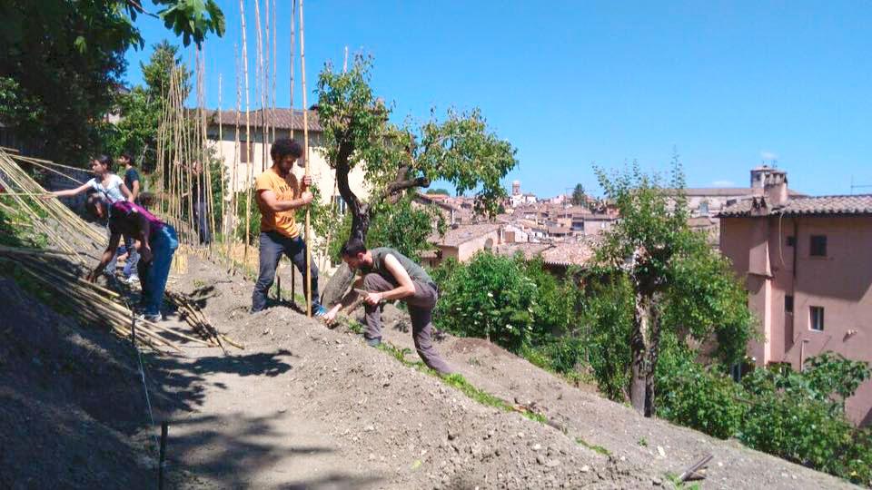 Lavori all'Orto Sole Perugia