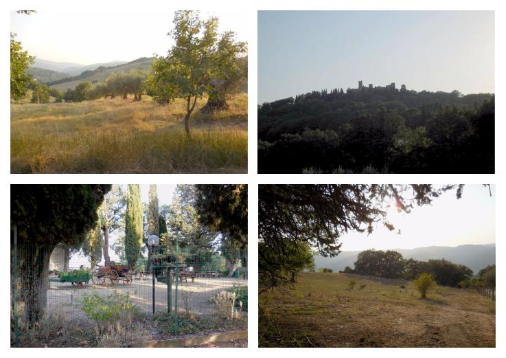 Panorama di Giomici