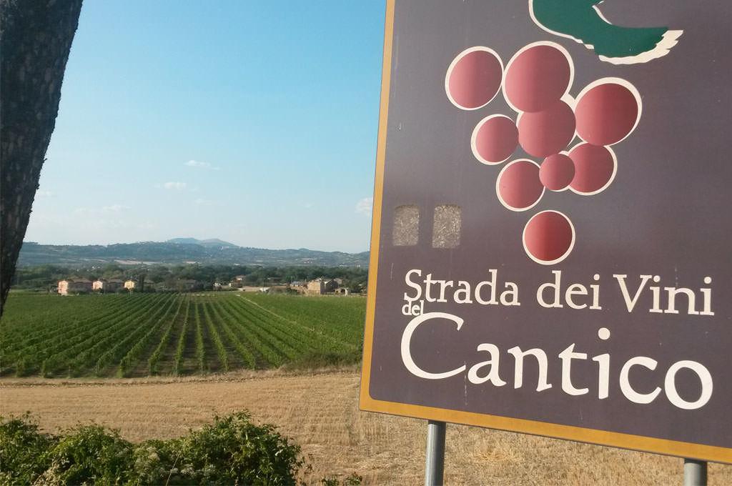 Vigne Lungarotti a Torgiano strada dei vini del cantico