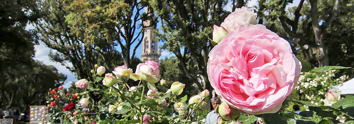 perugia-flower-show