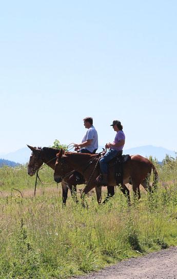 Passeggiare a cavallo