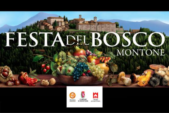 Festa del Bosco Montone