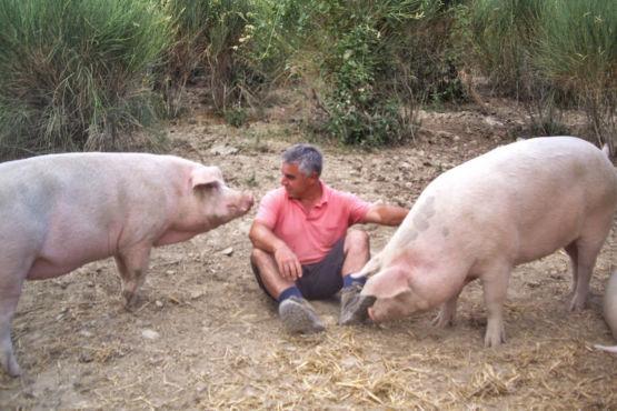 aziende agricole biologiche Umbria